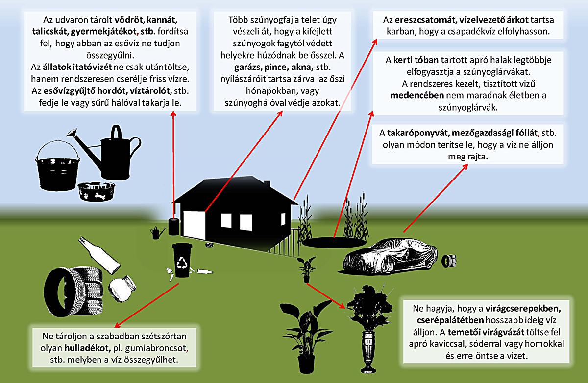 Harc a szúnyogok ellen